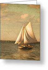Heading In Greeting Card by Michael Petrizzo