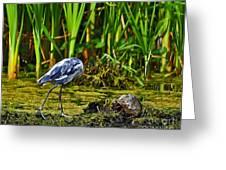 Headless Heron Greeting Card