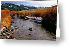 Headwaters Of The River Of No Return Greeting Card