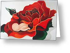 Healing Painting Baby Sleeping In A Rose Greeting Card