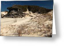 Healthy Dunes Greeting Card by Adam Jewell