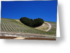 Heart Hill Paso Robles Greeting Card