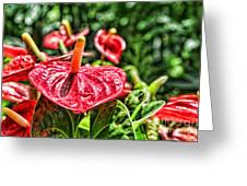 Heart Of Hawaii By Diana Sainz Greeting Card