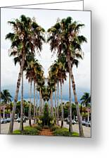 Heart Of Palms Greeting Card