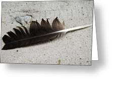 Heart Rock And Feather Greeting Card