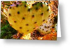 Heart Shaped Cactus Greeting Card