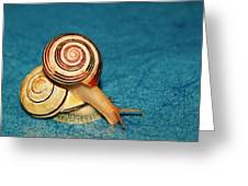 Heart Snails Greeting Card