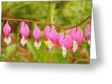 Hearts On The Line Greeting Card