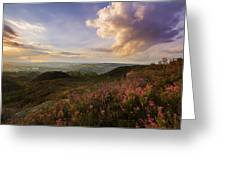 Heather Sunset Greeting Card