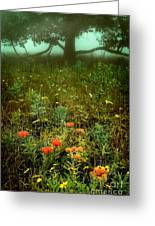 Heaven In The Gloom I - Blue Ridge Parkway Greeting Card by Dan Carmichael