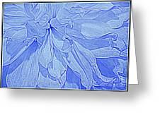 Heavenly Blue Dahlia Greeting Card