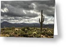 Heavenly Desert Skies  Greeting Card