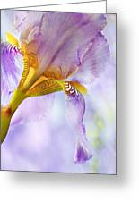 Heavenly Iris 2 Greeting Card by Theresa Tahara