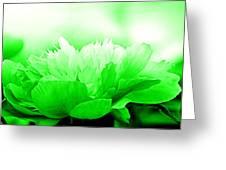 Heavenly Peony Green Greeting Card