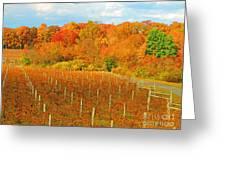 Heavenly Vineyard  Greeting Card