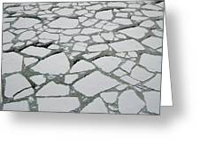 Heavy Pack Ice Terre Adelie Land Greeting Card