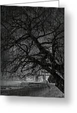 Heavy Rain Greeting Card by Svetlana Sewell
