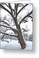 Heavy Snow Greeting Card