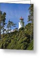 Heceta Head Lighthouse 1 B Greeting Card