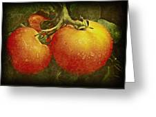 Heirloom Tomatoes On The Vine Greeting Card