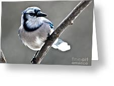 Hello Blue Greeting Card