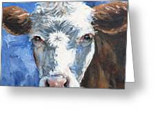 Hello Cow Greeting Card