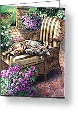 Hello From A Kitty Greeting Card by Regina Femrite