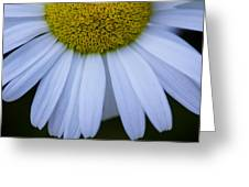 Hemisphere Greeting Card