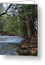 Hemlock Creek Edge Greeting Card