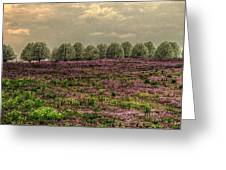 Henbit Up To The Bradfords Greeting Card