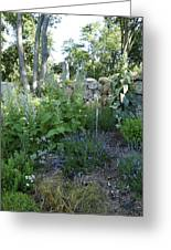 Herb Garden Greeting Card