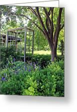 Herb Garden0981 Greeting Card