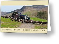 Get The Flock Out Greeting Card