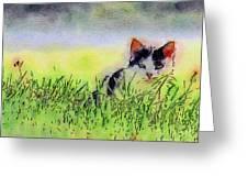 Here Kitty Kitty Kitty Greeting Card