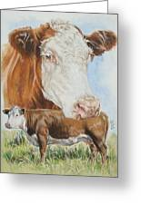 Hereford Cattle Greeting Card