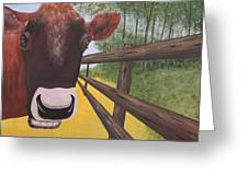 Here's Looking At Moo Greeting Card