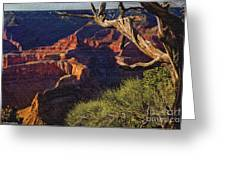 Hermit Rest Grand Canyon National Park Greeting Card