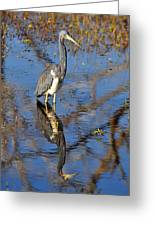 Heron And Reflection In Jekyll Island's Marsh Greeting Card by Bruce Gourley