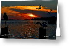 Heron And Seagull Sunset I Mlo Greeting Card