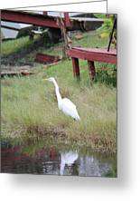 Heron And The Canal Greeting Card