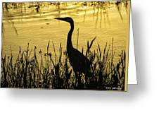 Heron At Sunrise Greeting Card