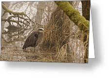 Heron In A Fog Greeting Card