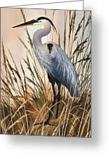 Heron In Tall Grass Greeting Card