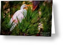 Heron In The Pines Greeting Card