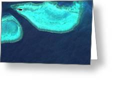 Heron Island Greeting Card