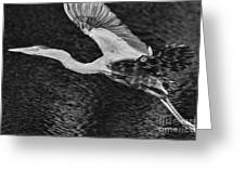 Heron On The Move Up Close Greeting Card