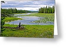 Heron Pond In Grand Teton National Park-wyoming   Greeting Card