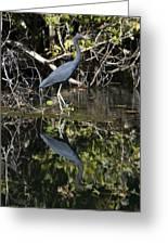 Heron Reflection Greeting Card