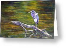 Heron Watching Greeting Card