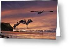 Herons At Sunset Greeting Card